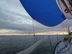 flauer Wind